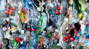 Plastic Free July Plastic Bottles