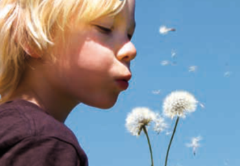 young boy blowing on wildflowers with blue sky behind